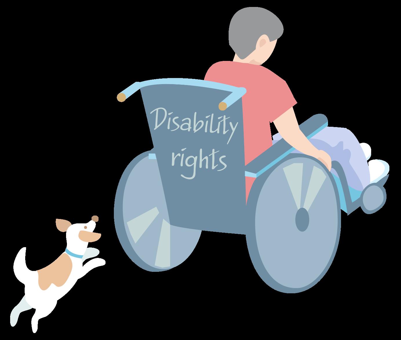 Sveriges första sommarskola om konventionen om rättigheter för personer med funktionsnedsättning