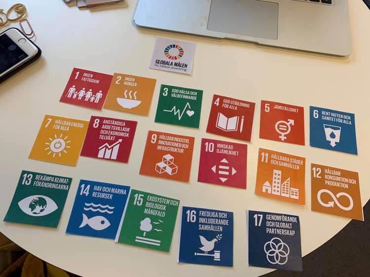 Hanna and Goliath processleder workshop om Agenda 2030 och funktionshinderperspektivet